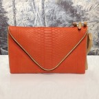 Grande enveloppe en python Orange