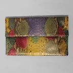 Pochette Clutch Multicolore