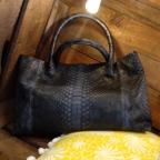 Loona Blue Python Bag